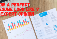 How a Perfect Resume Look Like - Expert Opinion